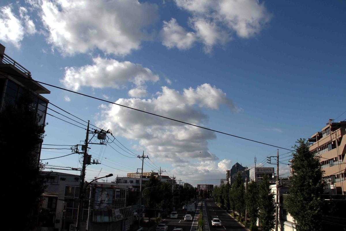 環八雲 20120819(4) 16時50分 笹目通り土支田付近から北方面