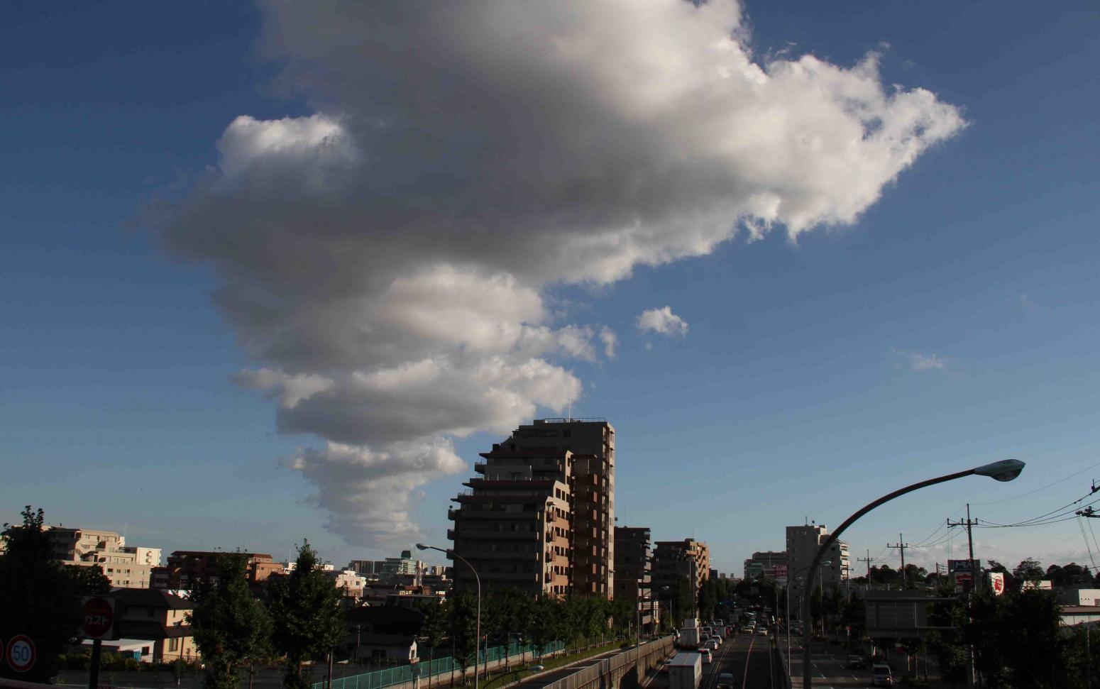 環八雲 20120819(6) 17時05分 谷原付近から井荻方面