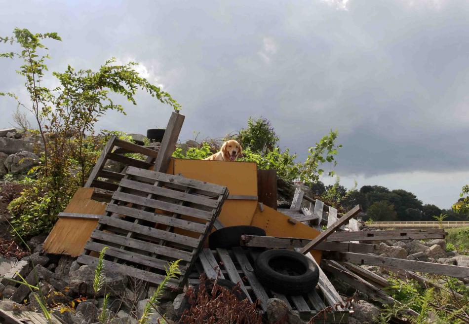 台風17号の近づく日に(15)