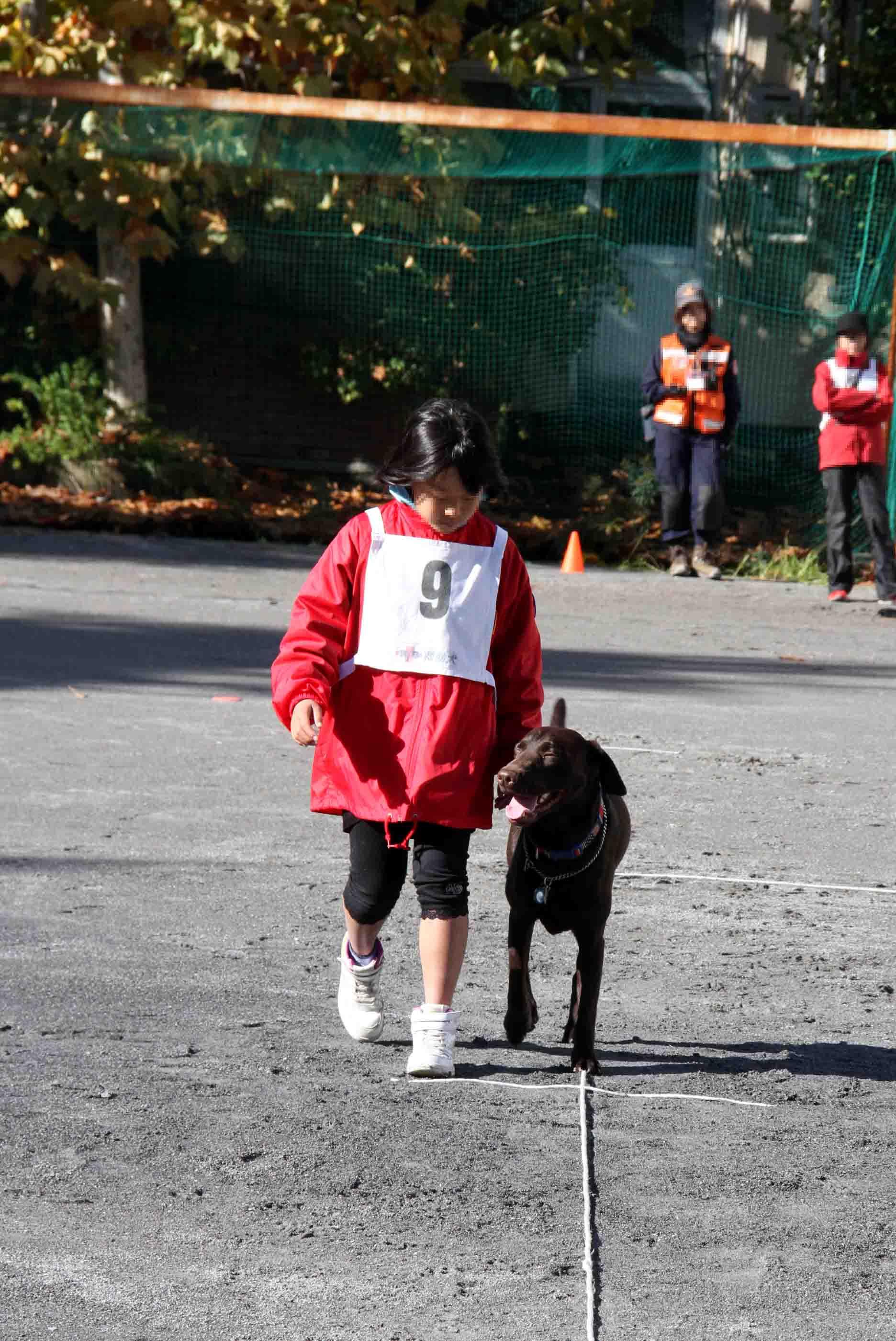 人と犬とのいい関係 基本(3)