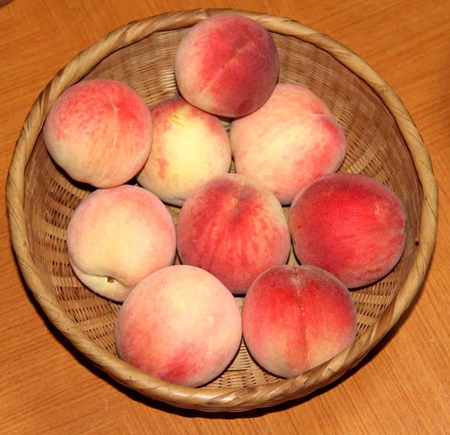 桃とゴールデン (1)