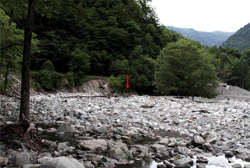 三峰川 7月14日 渓流周辺の捜索(13)