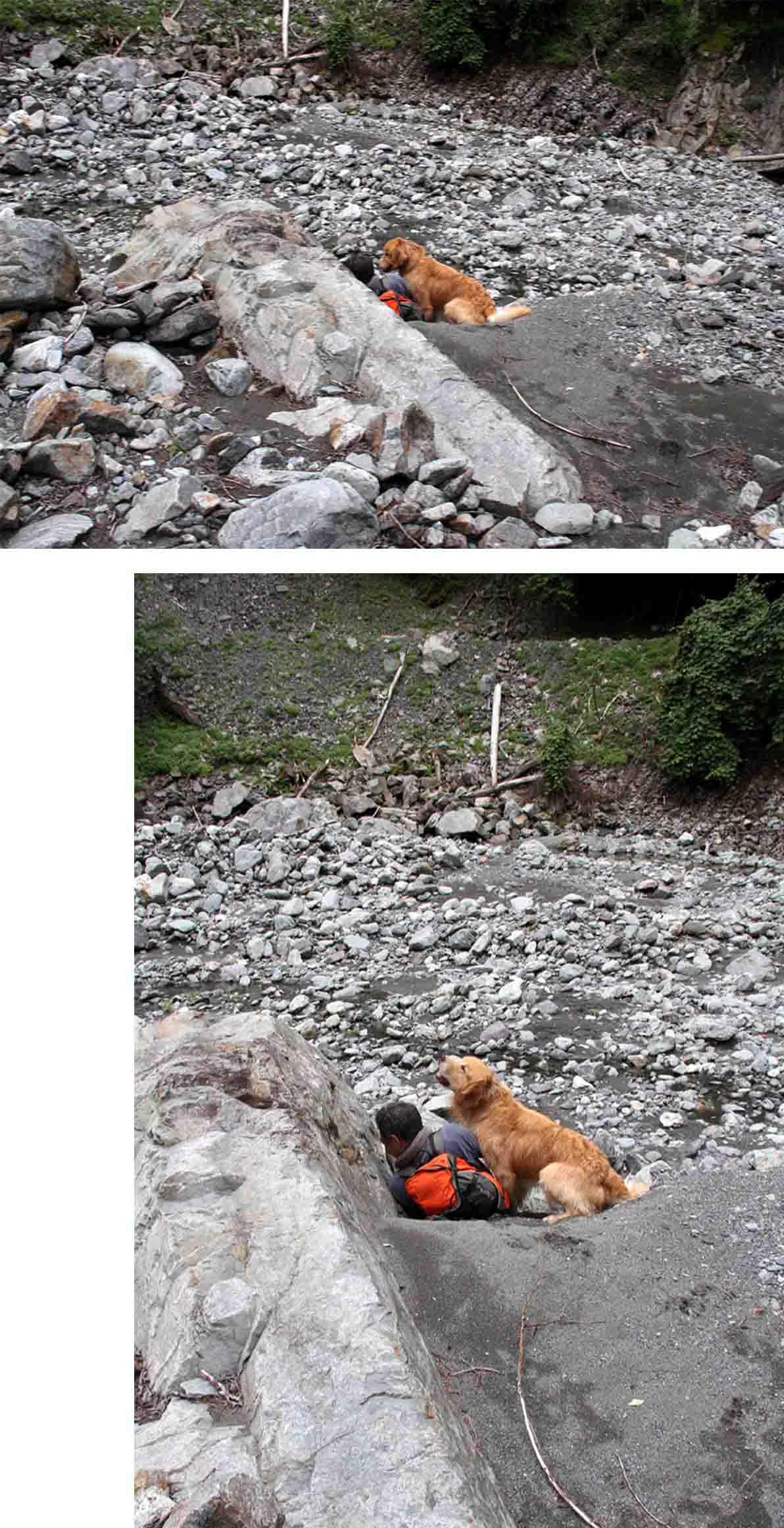 三峰川 7月14日 渓流周辺の捜索(22)