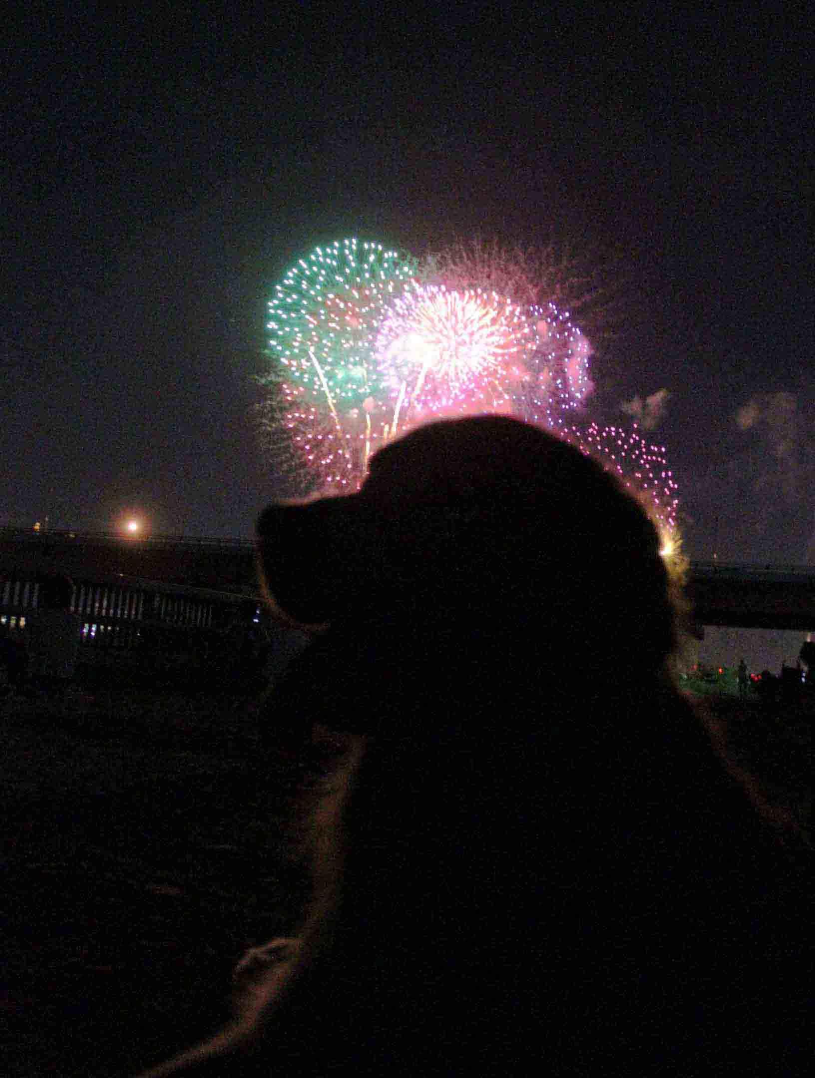 ヒットの花火見学(1)