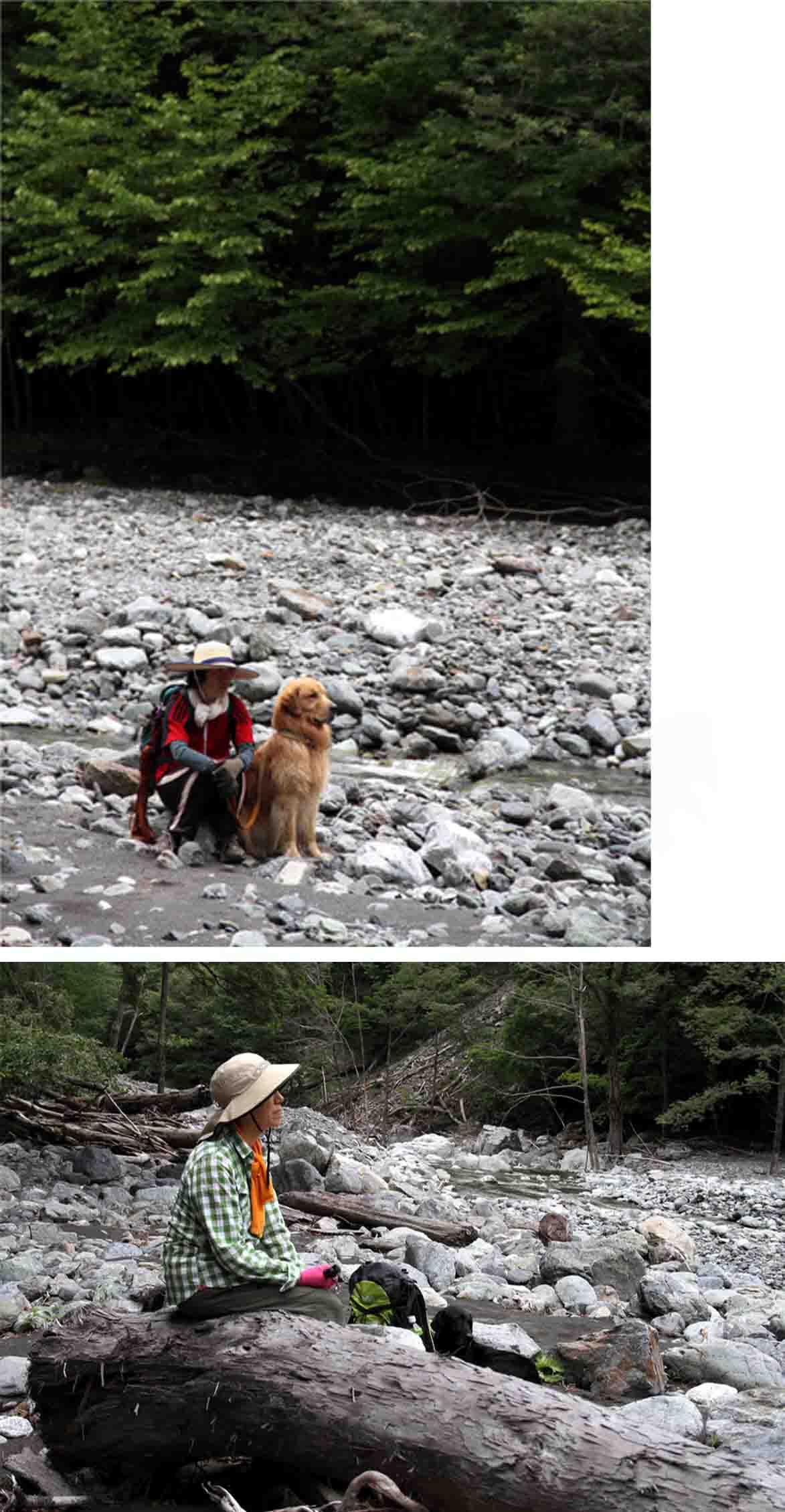 三峰川 7月14日 渓流周辺の捜索(24)