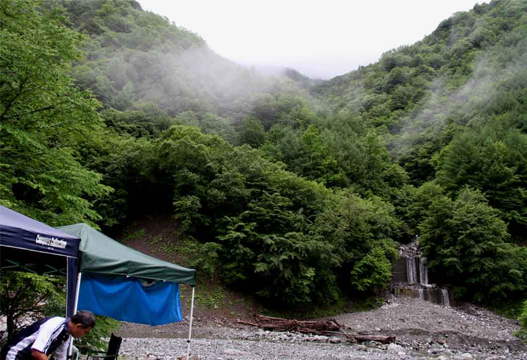 7月15日 三峰川 朝(1)