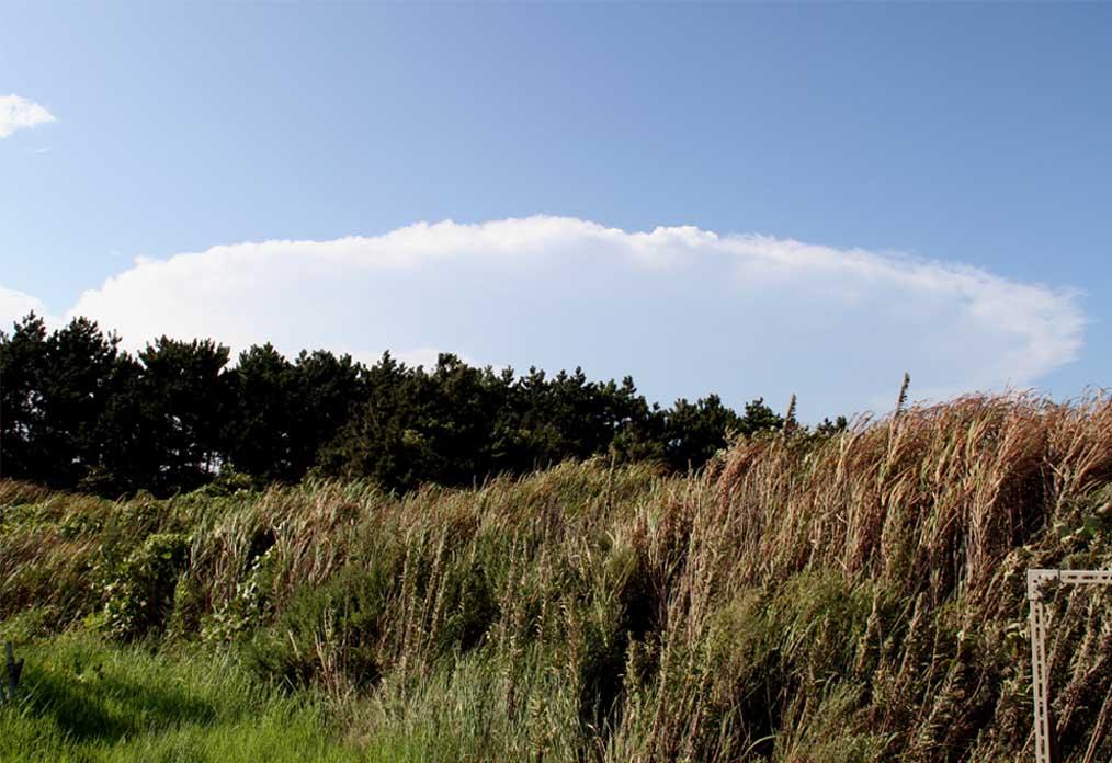 9月1日の関東中部の大雨とカナトコ雲(1)