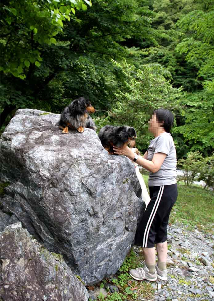 7月15日 三峰川 いつものお立ち台で(3)