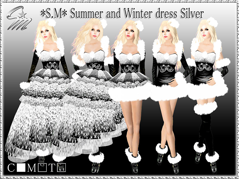 Summer and Winter dress Silver2_800