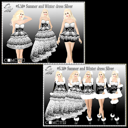 Summer and Winter dress Silver