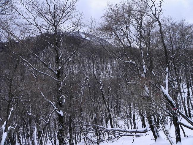 A006-11:45蛭ヶ岳