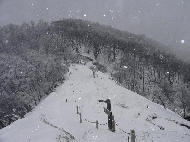 A006-12:28蛭ヶ岳