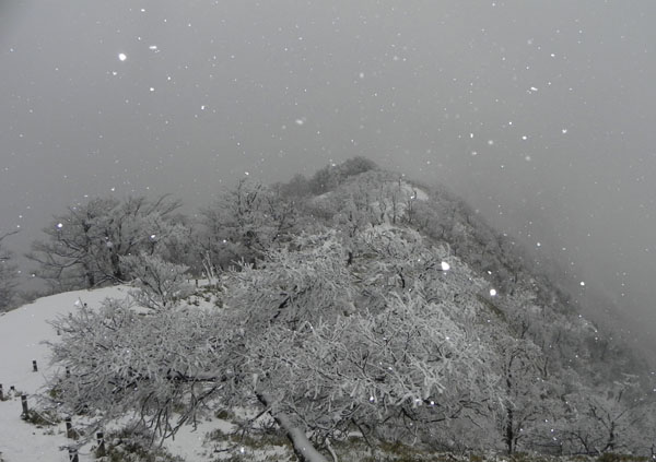 A006-2-12:54蛭ヶ岳