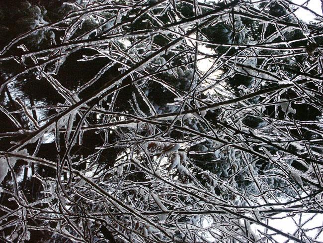 A011-2雨氷