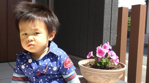DSC_0168_convert_20120515201857.jpg