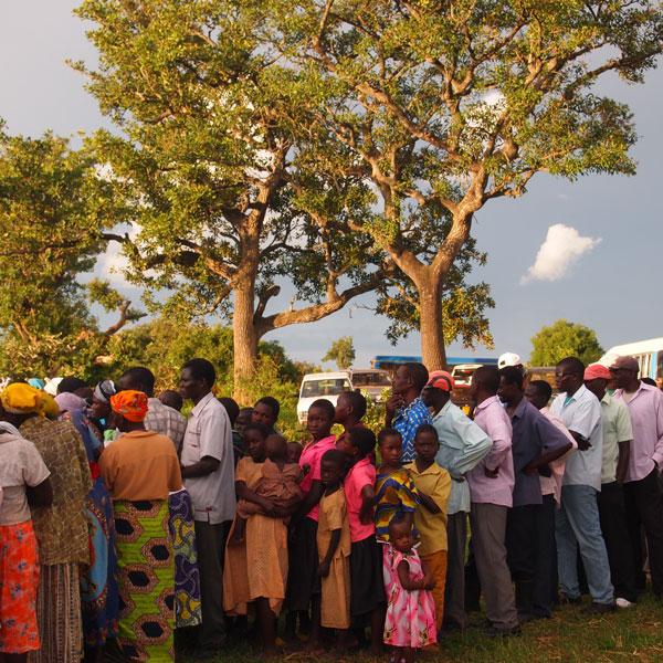 シアの木に集まる人々
