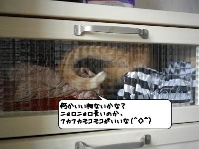 20120509_134357.jpg