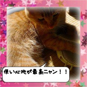 20120514_180849.jpg