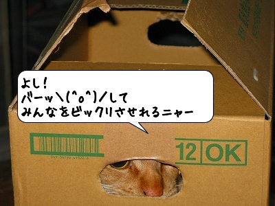 20120519_202039.jpg