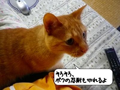 20120523_182305.jpg