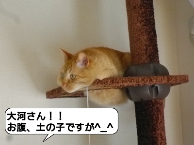 20120524_222413.jpg