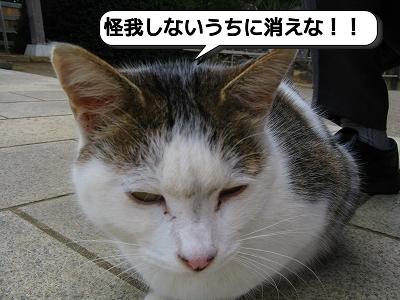 20120526_163658.jpg