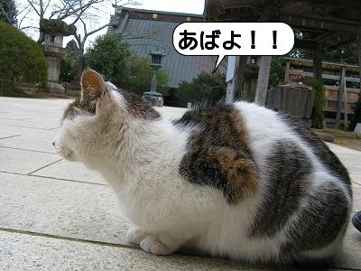 20120526_163745.jpg
