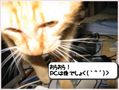 20120615_212958.jpg