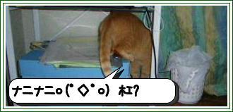 20120619_203448.jpg