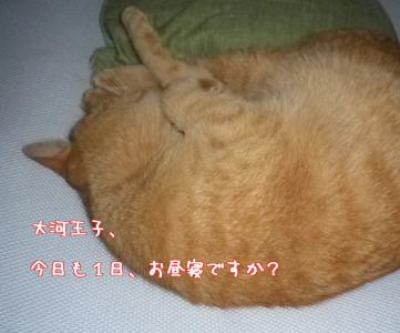 TxsGM86AroCPALS.jpg