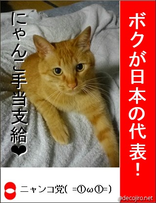 decojiro-20120606-175022.jpg