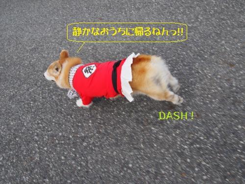 家までダッシュ
