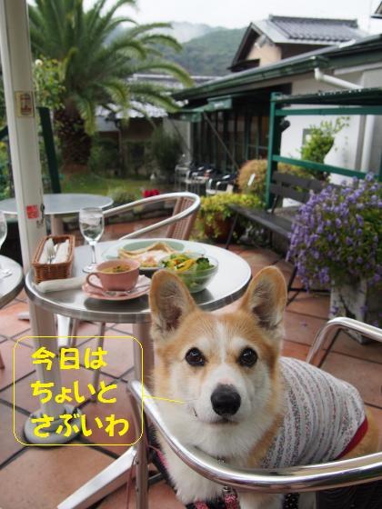 瀬田のカフェ