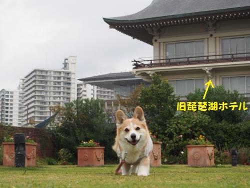 旧琵琶湖ホテル前でダッシュ