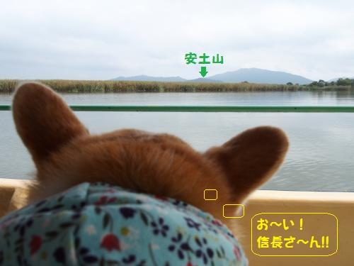 安土山眺める~節ちん