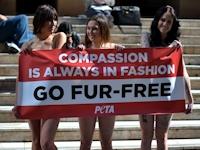 オーストラリアでPETAの若い女性がトップレスで毛皮反対デモ