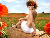 ポーランドの棺桶メーカーが2014年も棺桶とヌードのコラボカレンダーを発売