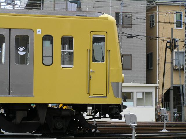 P3200047.jpg