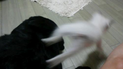 みなみ&ケイ