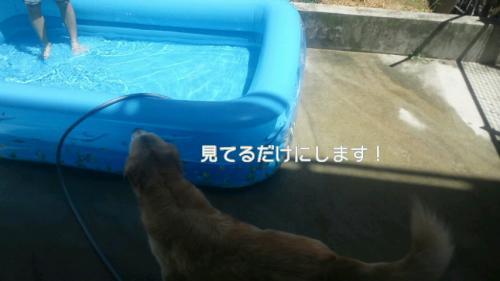 rana_20120817190227.jpg