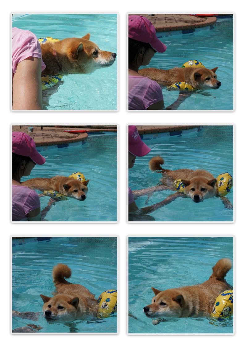 jessie swim2