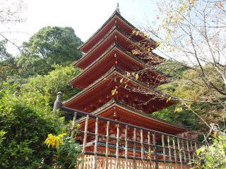 長谷寺-五重塔1
