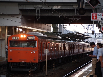 P8164306.jpg