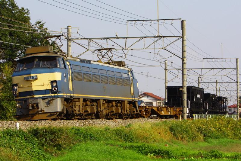 20121022_6795_1.jpg