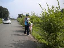 りんくる夏2