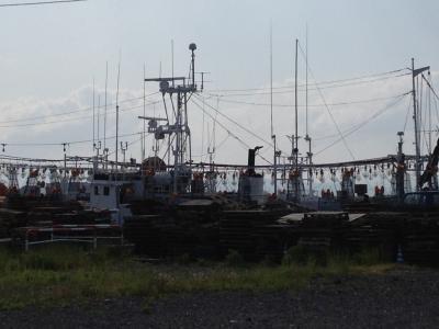 並ぶイカ漁船