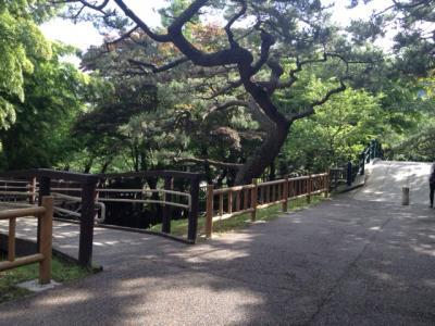 函館公園②