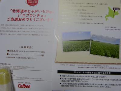 P1060853.jpg