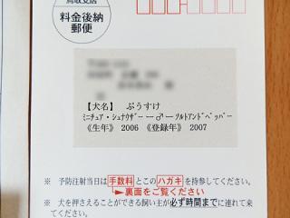 P4210363.jpg