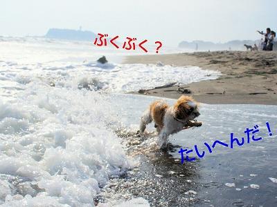 rakugaki_20130927_0001.jpg